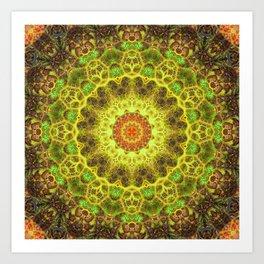 Dimensional Transition Mandala Art Print