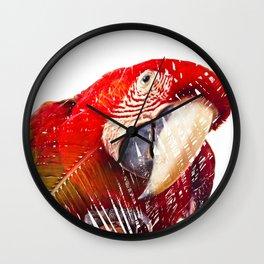 Guacamaya / Macaw Wall Clock
