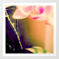 orchid Art Prints featuring orchid by Eva Lesko