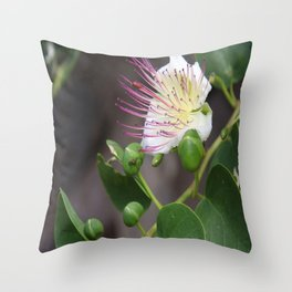 Capers Flower And Fruits Throw Pillow