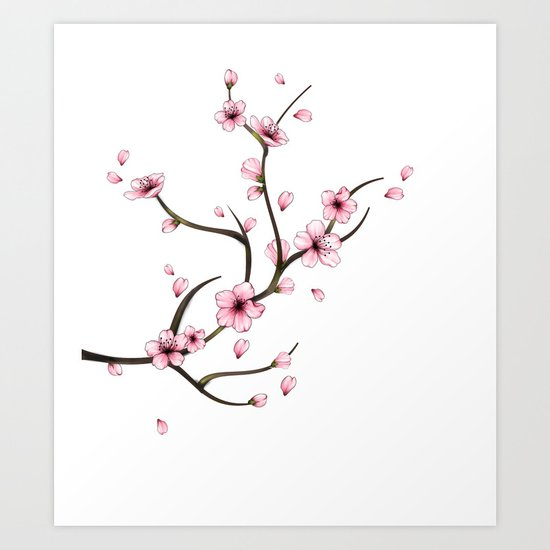 Cherry Blossom branch by mitalim