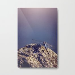 Dragonfly On The Lake Metal Print