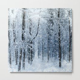 Winter wonderland scenery forest  Metal Print