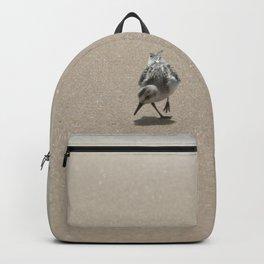 Sandpiper bird on wet sand Backpack