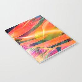 Earth V1 Notebook