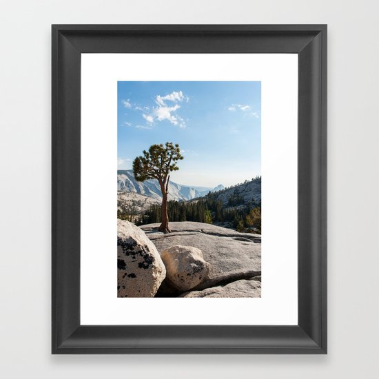 Yosemite Park Framed Art Print
