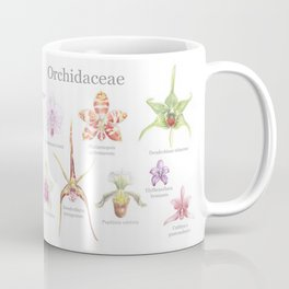 Selection of Orchid Species  Coffee Mug