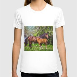 Mother horse with little foal T-shirt
