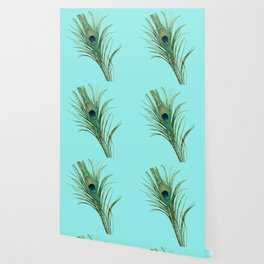 Peacock Feather on Blue Background Wallpaper