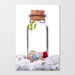 Cork Jar Micro Aqua Terrarium Canvas Print