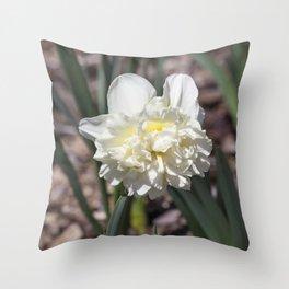 Daffodil in Cream Throw Pillow