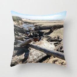 Drifting on Newport Beach Throw Pillow