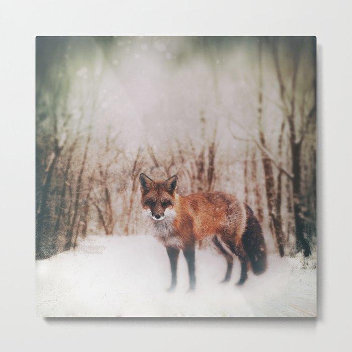 Winter Visitor Metal Print