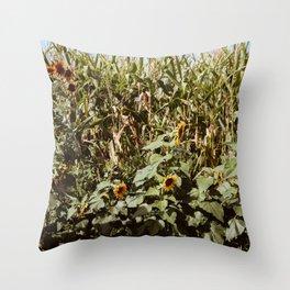 Sunflower Corn Throw Pillow