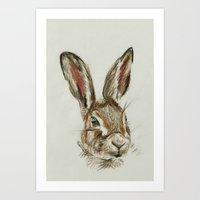 hare Art Prints featuring Hare by Hannah Isabelle Lewis