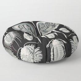 Ernst Haeckel Horseshoe Crab Vintage Illustration Floor Pillow