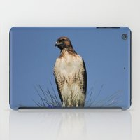 snatch iPad Cases featuring Red-Tailed Hawk on Watch at Foothill and B Street by Ralph S. Carlson
