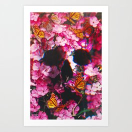 Pinkish Flowers  Art Print