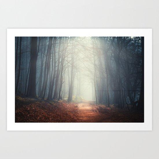 the quiet path Art Print