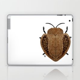 Exotic Wood Tortoise Beetle Laptop & iPad Skin