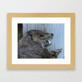 #406 bitterroot montana VARMITS Framed Art Print