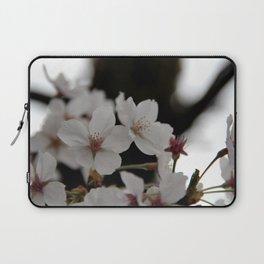 Sakura blossoms up close Laptop Sleeve