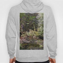 A walk in the woods Hoody