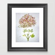 Botanical Blueprints Framed Art Print