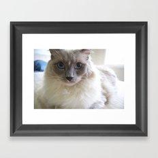 Whatchu Lookin At Framed Art Print