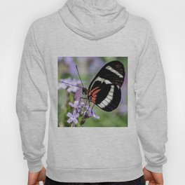 Spring Butterfly Garden Photo Hoody