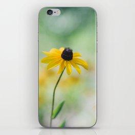 Black Eyed Susan iPhone Skin