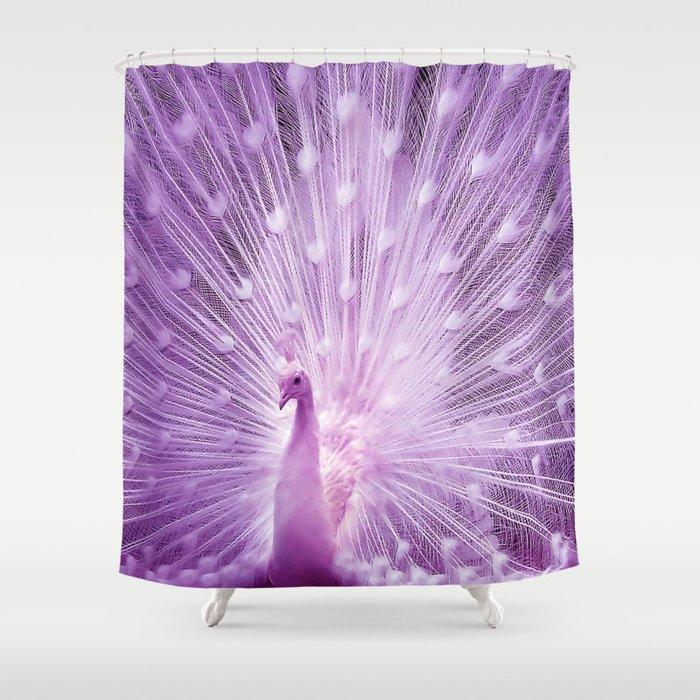 White Peacock Shower Curtain by erikakai