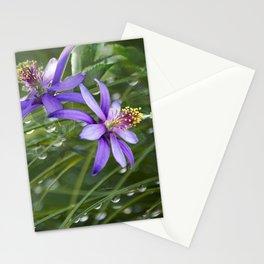 Meadow Dew Stationery Cards