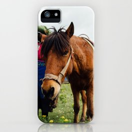 horse by Hanson Lu iPhone Case