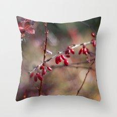 Rose Hip Color Throw Pillow