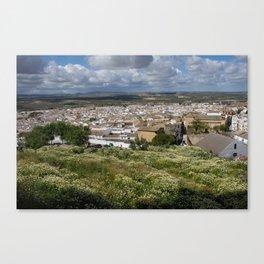 white villages Canvas Print