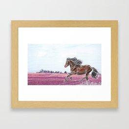 Wild Horse 1 Framed Art Print