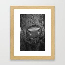Grinning Cow Framed Art Print