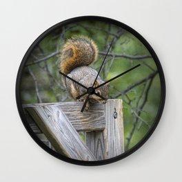 Fox Squirrel on a fence Wall Clock