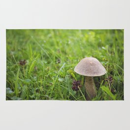 Mushroom in the Morning Dew by Althéa Photo Rug