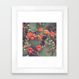 Flamenco Framed Art Print