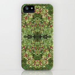 Hawthorn B Fractal iPhone Case