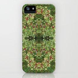 Hawthorn B Fractal iPhone Case