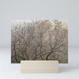 Autumnal tree branches Mini Art Print