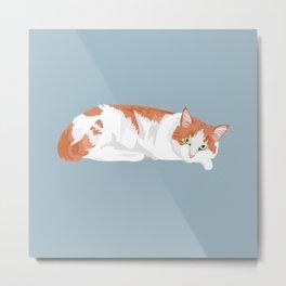 Ginger the cat Metal Print