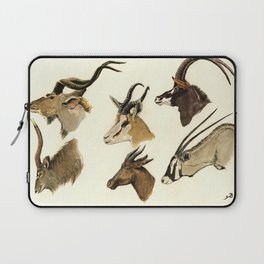 african antelopes Laptop Sleeve