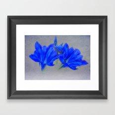 Painted Blue Gentians Floral Framed Art Print