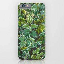 Leafage Green Foliage Photo Pattern iPhone Case