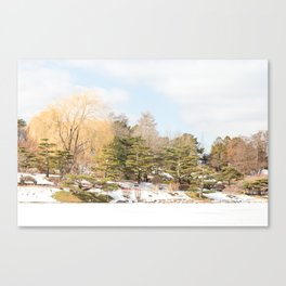Winter at the Japanese Gardens, No 1 Canvas Print