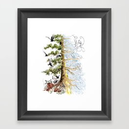 The Woods and The Water Framed Art Print